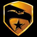 gi-joe-the-rise-of-cobra-logo